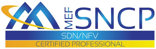 MEF-SNCP